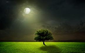 фэнтези, дерево, природа, фотошоп, ночь, облака