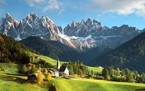 Alps, stunner, forest, mountain, beautiful