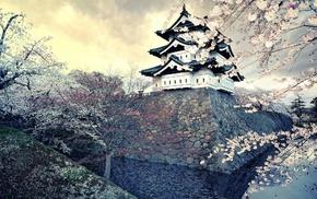 castle, Japan, cherry blossom