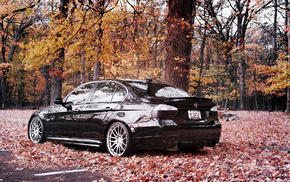 forest, autumn, wheels, cars, BMW