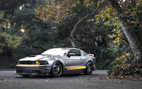 trees, gt, road, Ford, mustang