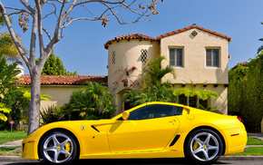 tree, Ferrari, cars, auto, house