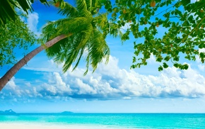 summer, clouds, theme, beach, tropics