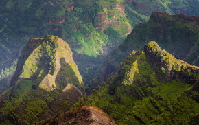 США, зелень, красивые, каньон, скалы, каньон Ваймеа