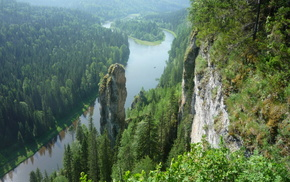 forest, greenery, trees, river, Russia