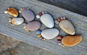 камни, следы, дерево, макро