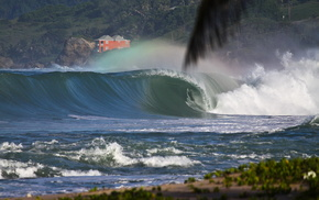 surf, stunner, ocean, greenery