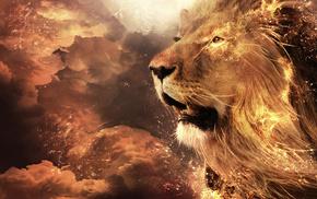 фэнтези, морда, лев, огонь, дикая кошка