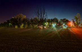 красивые, лучи, свет, огни, деревья