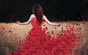rosedress, flowers, petals, красивые