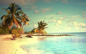 tropical, пляж, лето, пальмы, курорт, океан