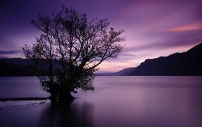 landscape, lake, nature, trees