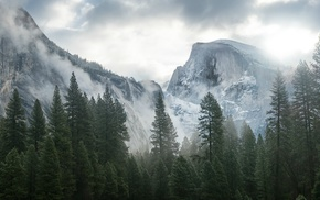 mountain, mist, trees, Yosemite National Park, nature