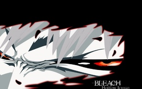 Bleach, Kurosaki Ichigo, anime, Hollow
