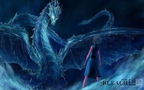 парни из аниме, лед, Блич, дракон