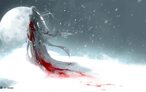 blood, snow