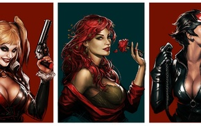 DC Comics, Catwoman, Poison Ivy, Harley Quinn, artwork