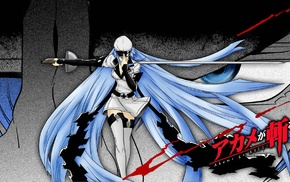 Akame ga Kill, Esdeath