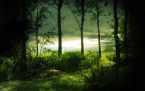 water, nature