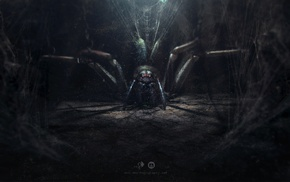 Desktopography, digital art, spider