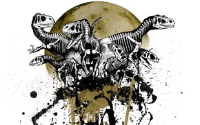 dinosaurs, skeleton, skull, moon