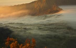 landscape, mist