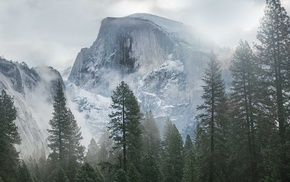 trees, mist, overcast, Yosemite National Park, mountain, snow