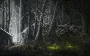 forest, house, fantasy art, lights, trees, digital art