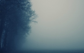 mist, nature