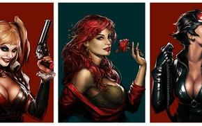 Poison Ivy, Batman, Harley Quinn, Catwoman, DC Comics