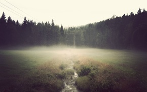 field, forest, power lines, mist, stream, overcast