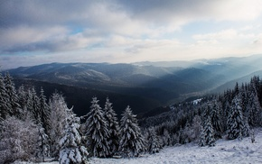 nature, hill, landscape, winter, forest, trees