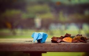 leaves, elephants, depth of field, table, fall, wood