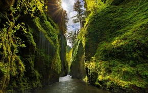 nature, Sun, trees, clouds, river, sun rays