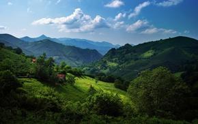 Spain, trees, nature, landscape