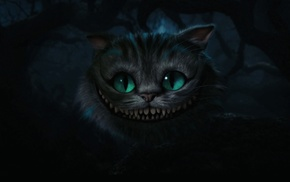 Alice in Wonderland, cat