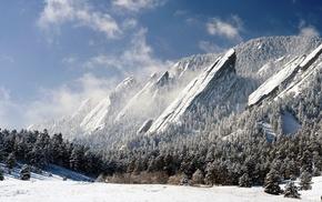 Colorado, snow, mountain, USA, forest, pine trees