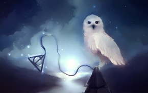 Hedwig, stars, Harry Potter, Apofiss, owl, night