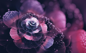 abstract, fractal, digital art, bokeh, fractal flowers, petals