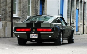 Ford, car, Shelby GT500