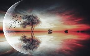 birds, landscape, trees, moon, reflection, lake