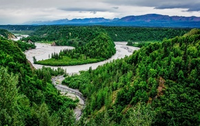 river, forest, nature, mountain, landscape, trees