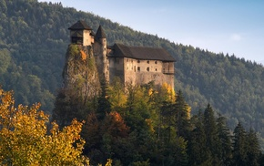 forest, nature, fall, hill, rock, architecture