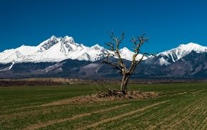 Tatra Mountains, hill, field, landscape, nature, snow
