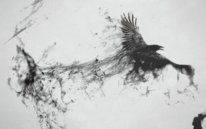 digital art, white background, crow, animals, monochrome, artwork
