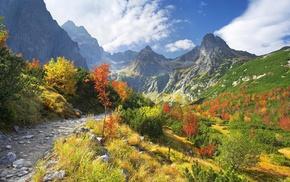 grass, nature, stones, Tatra Mountains, Slovakia, path