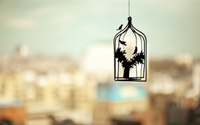 trees, silhouette, depth of field, photography, cityscape, birds