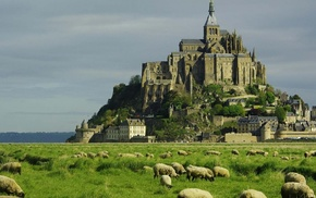 sheep, old building, plains, Mont Saint, Michel, landscape