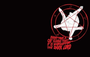 cat, pentagram, minimalism, black