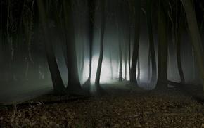 nature, silhouette, dark, landscape, night, trees